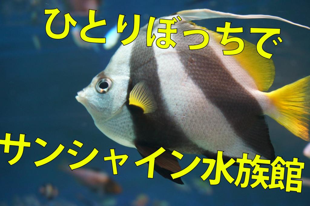 f:id:takayuki2525:20160804225715j:plain