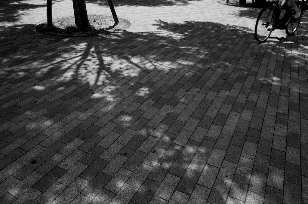 f:id:takayukimiki:20151217194259j:plain