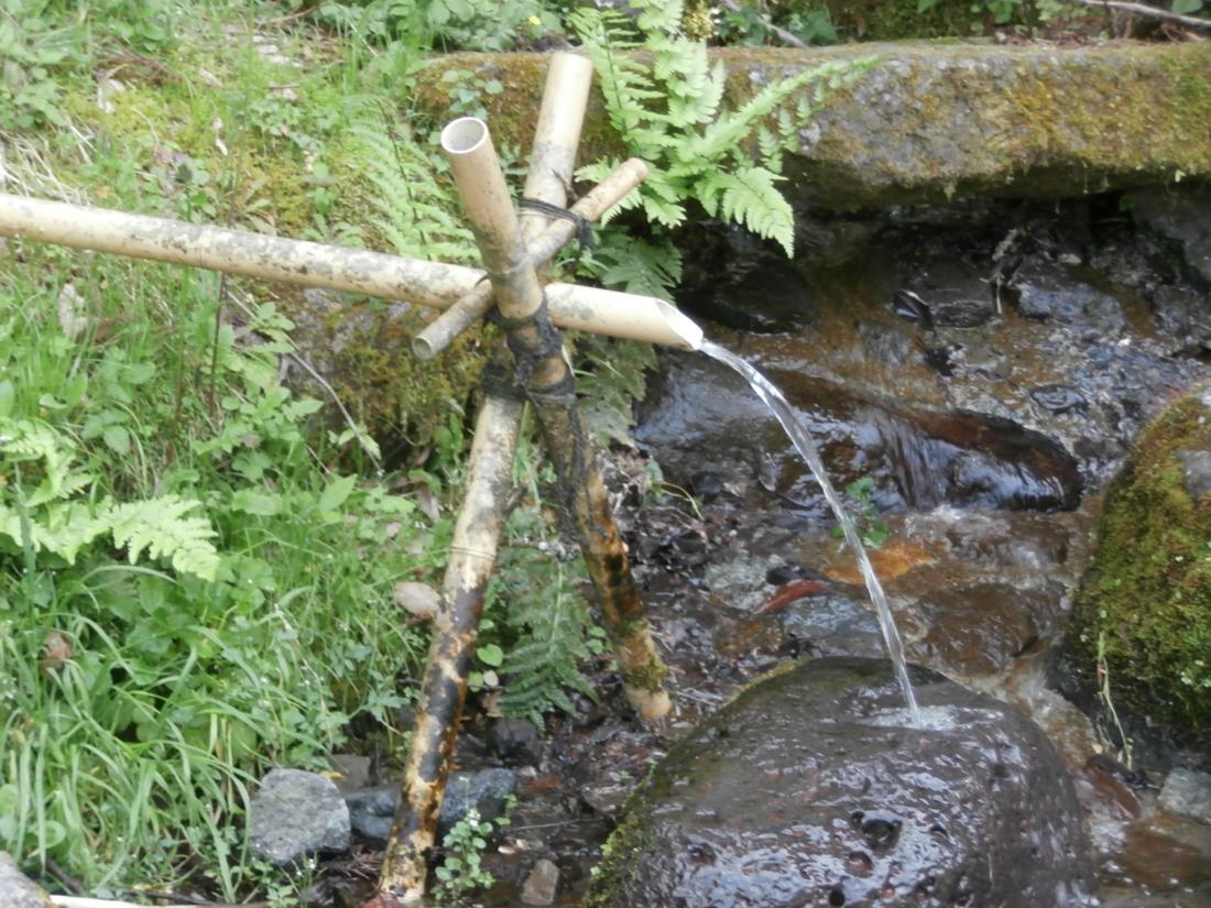 金太郎の力水