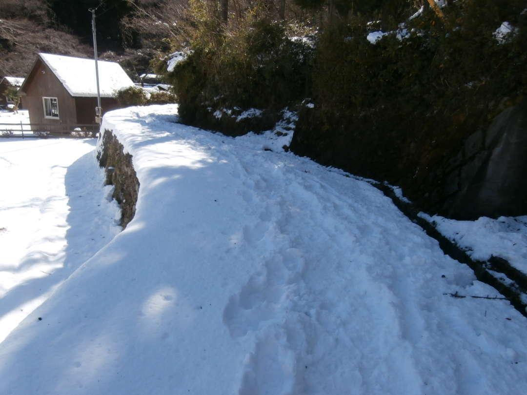 滝への道の雪