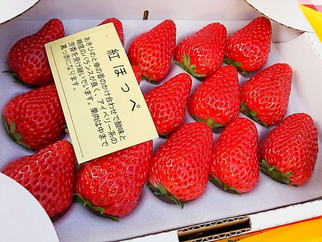販売用イチゴ