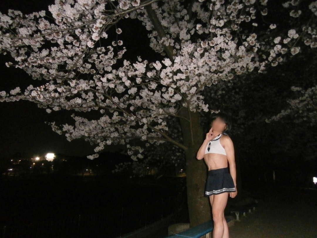 桜コラボ撮影