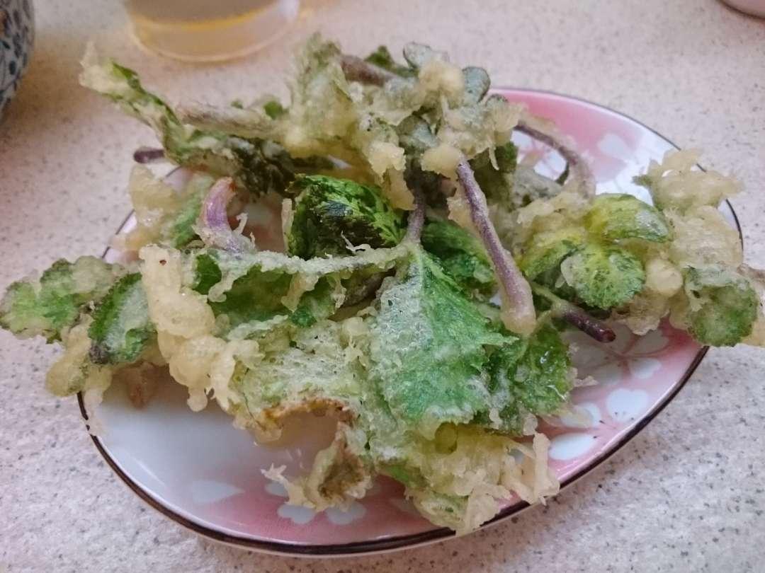 ハマボウフウの天ぷら