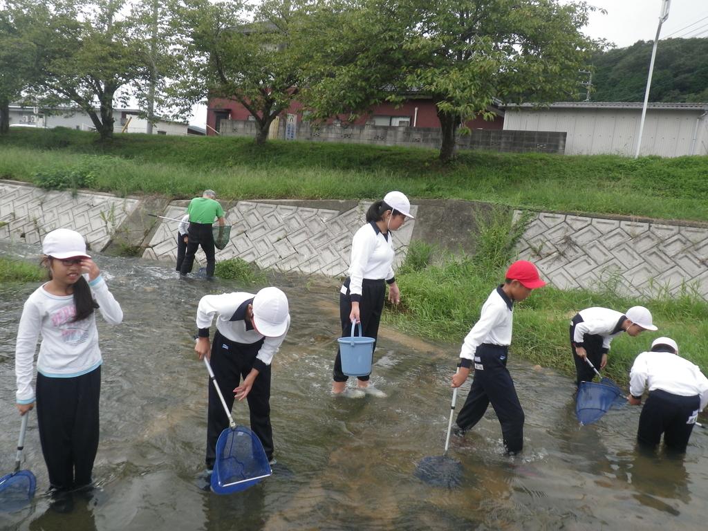 f:id:takebe_primary_school:20180912150838j:plain