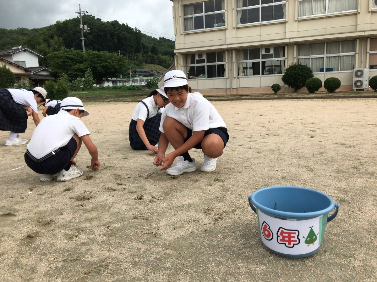 f:id:takebe_primary_school:20190701134624j:plain