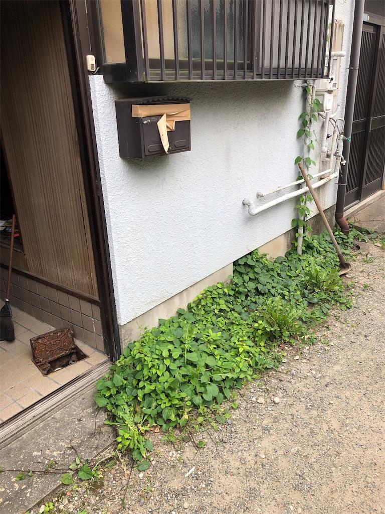 f:id:takeda-kohei:20210627012635j:image