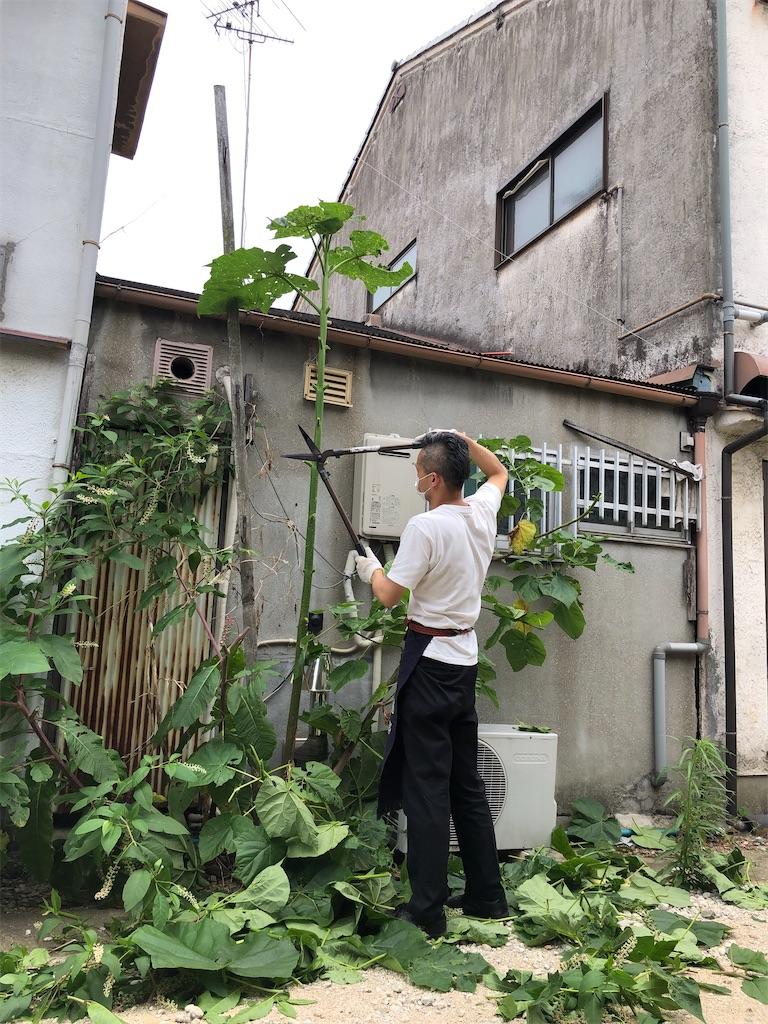 f:id:takeda-kohei:20210627013220j:image