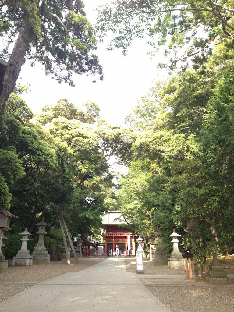f:id:takedamiki-J:20190520223119j:image
