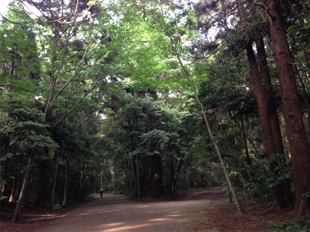 f:id:takedamiki-J:20190520223147j:image