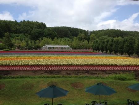 f:id:takedasawa:20120806103610j:image
