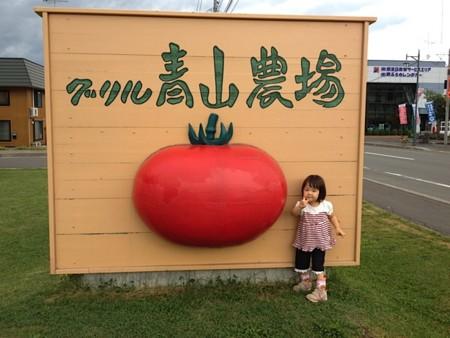 f:id:takedasawa:20120816225344j:image