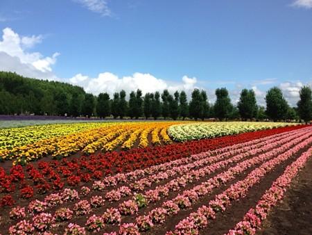 f:id:takedasawa:20120816230859j:image