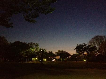 f:id:takedasawa:20131123235112j:image