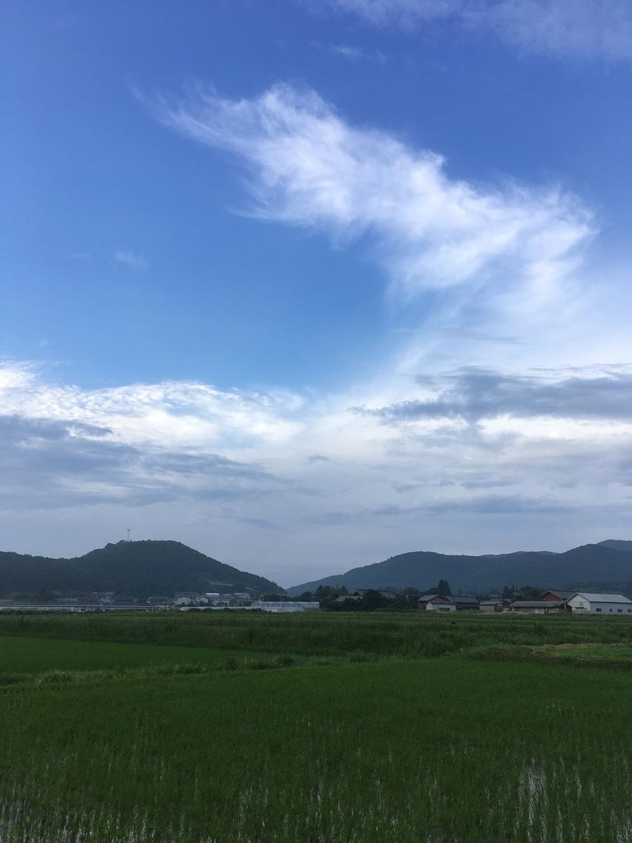 f:id:takehiro0405:20190806212747j:plain