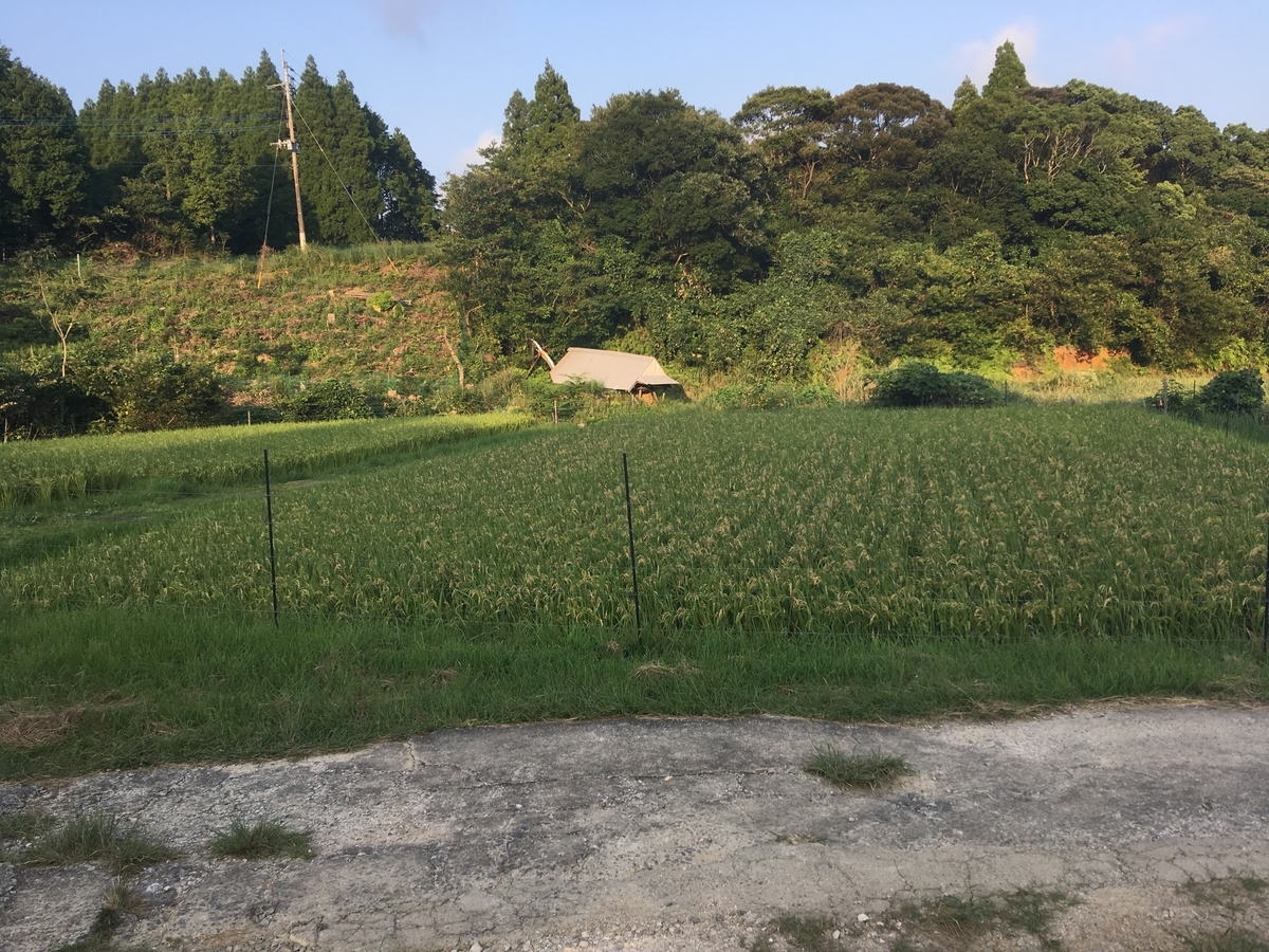 f:id:takehiro0405:20191003200943j:plain