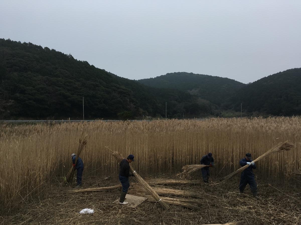 f:id:takehiro0405:20200212154542j:plain