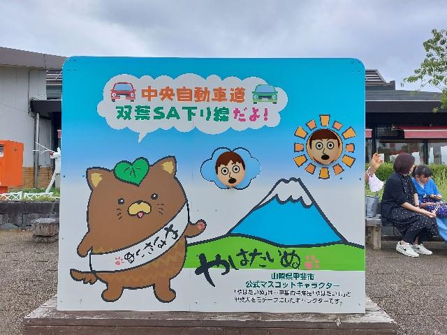 f:id:takehiroakamar:20210923150124j:image