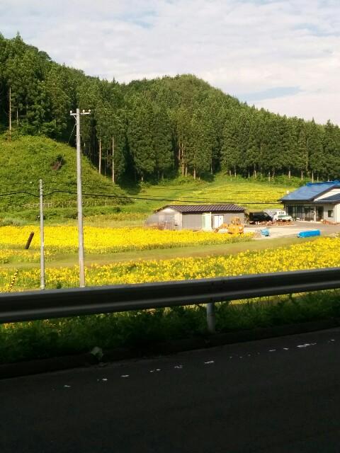 f:id:takehirokun:20170712234707j:image