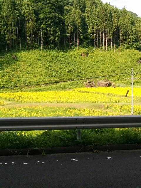 f:id:takehirokun:20170712234853j:image