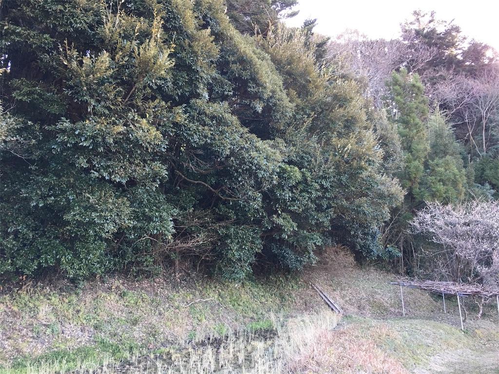 f:id:takehirosudo:20170117163226j:image