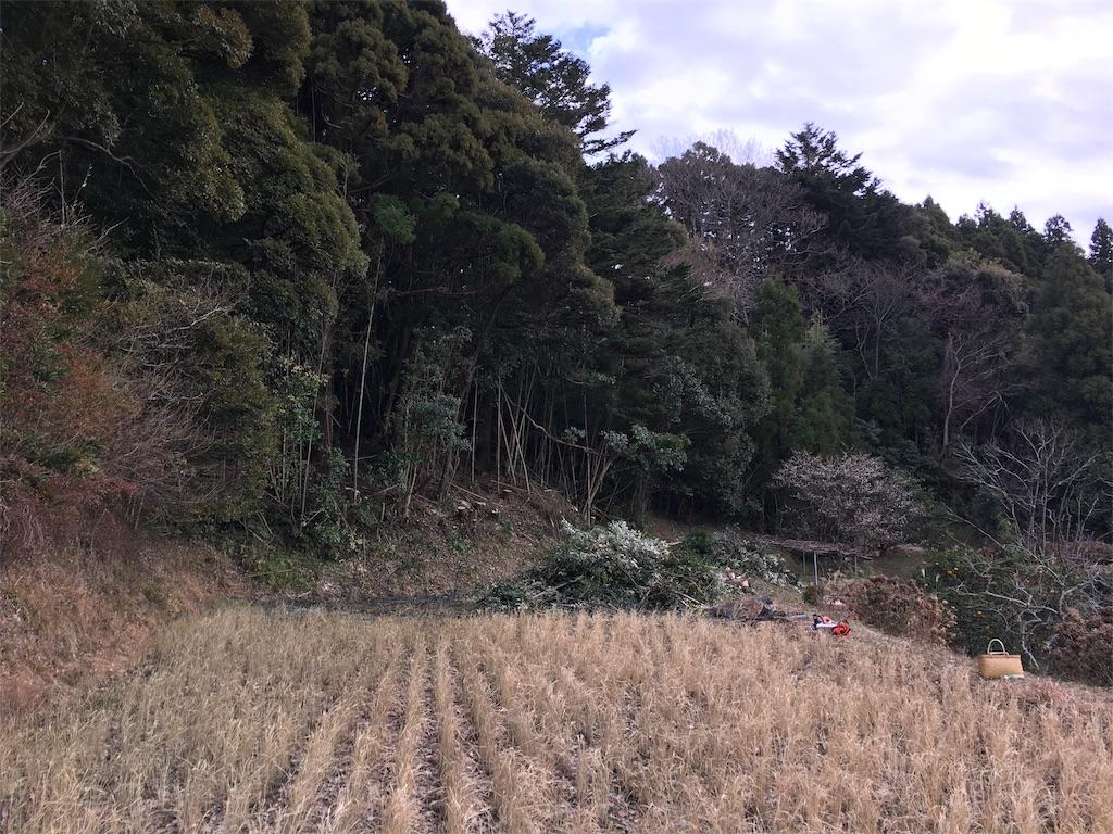 f:id:takehirosudo:20170118233155j:image