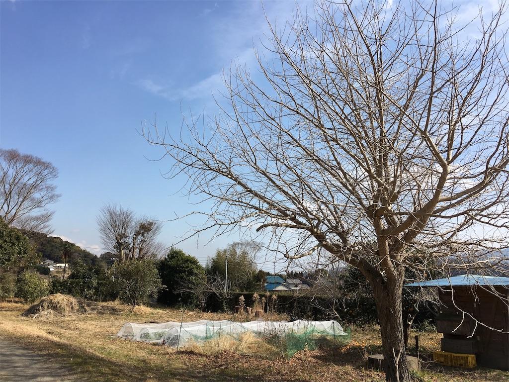 f:id:takehirosudo:20170129220725j:image