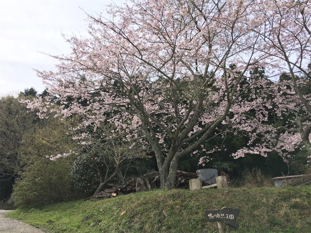 f:id:takehirosudo:20170411105029j:image
