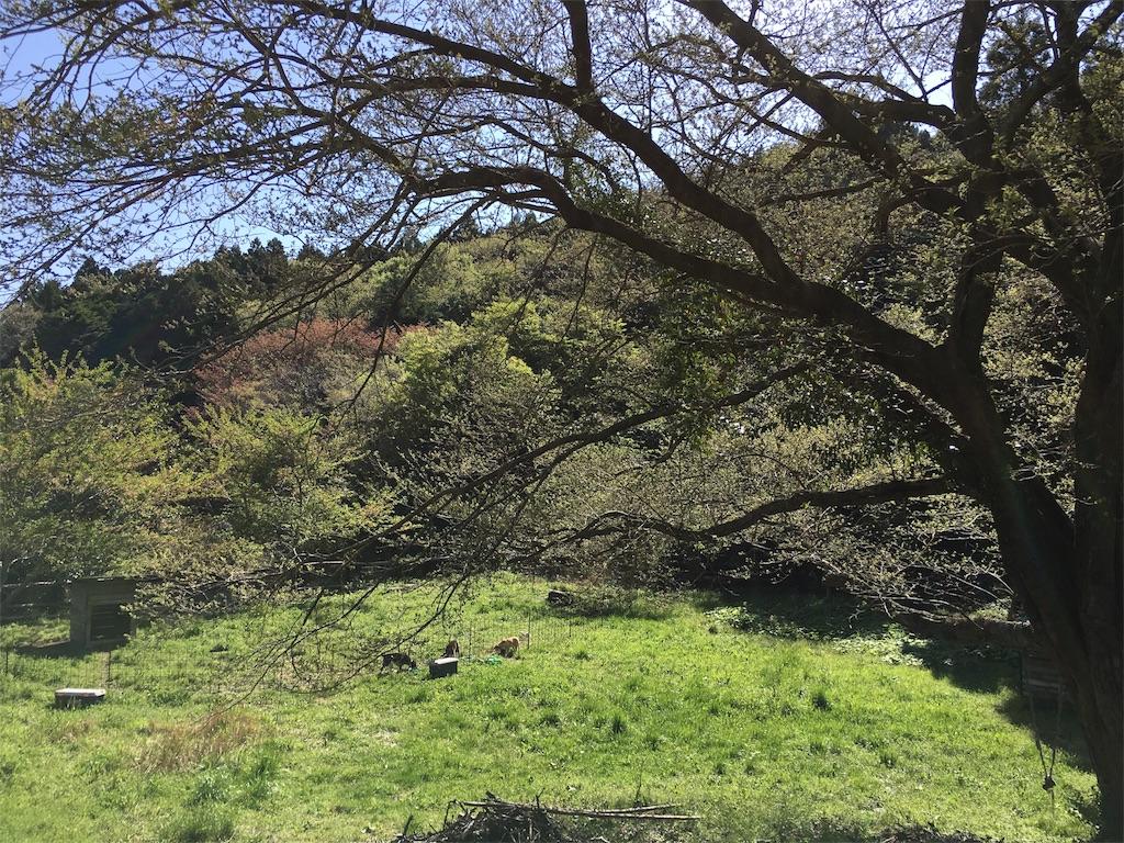 f:id:takehirosudo:20170422223433j:image