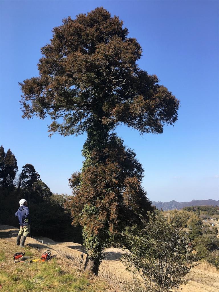 f:id:takehirosudo:20180215200212j:image