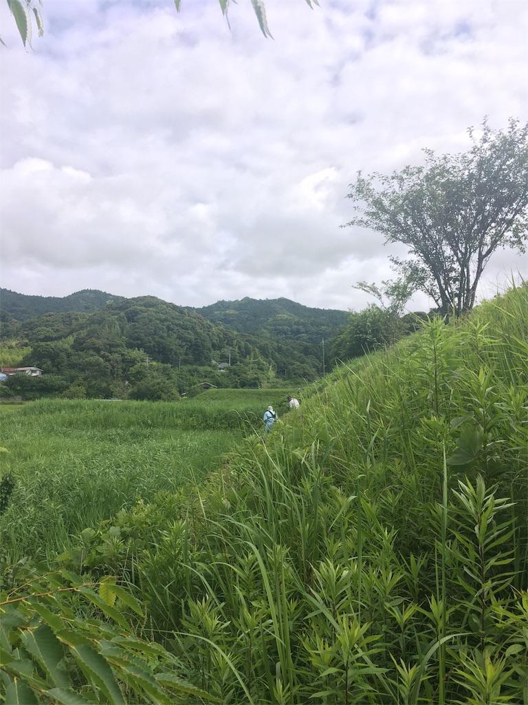 f:id:takehirosudo:20180617205557j:image