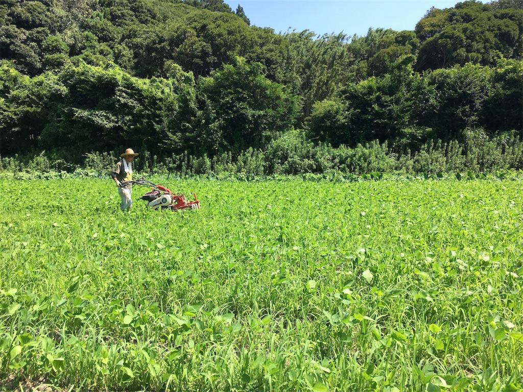 f:id:takehirosudo:20180719234326j:image