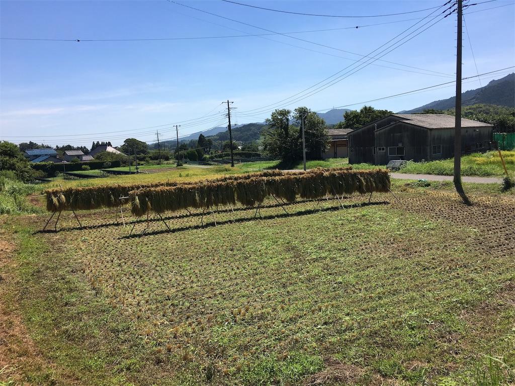 f:id:takehirosudo:20180826222553j:image