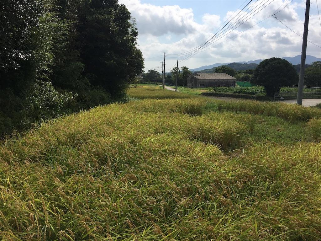 f:id:takehirosudo:20180830220310j:image