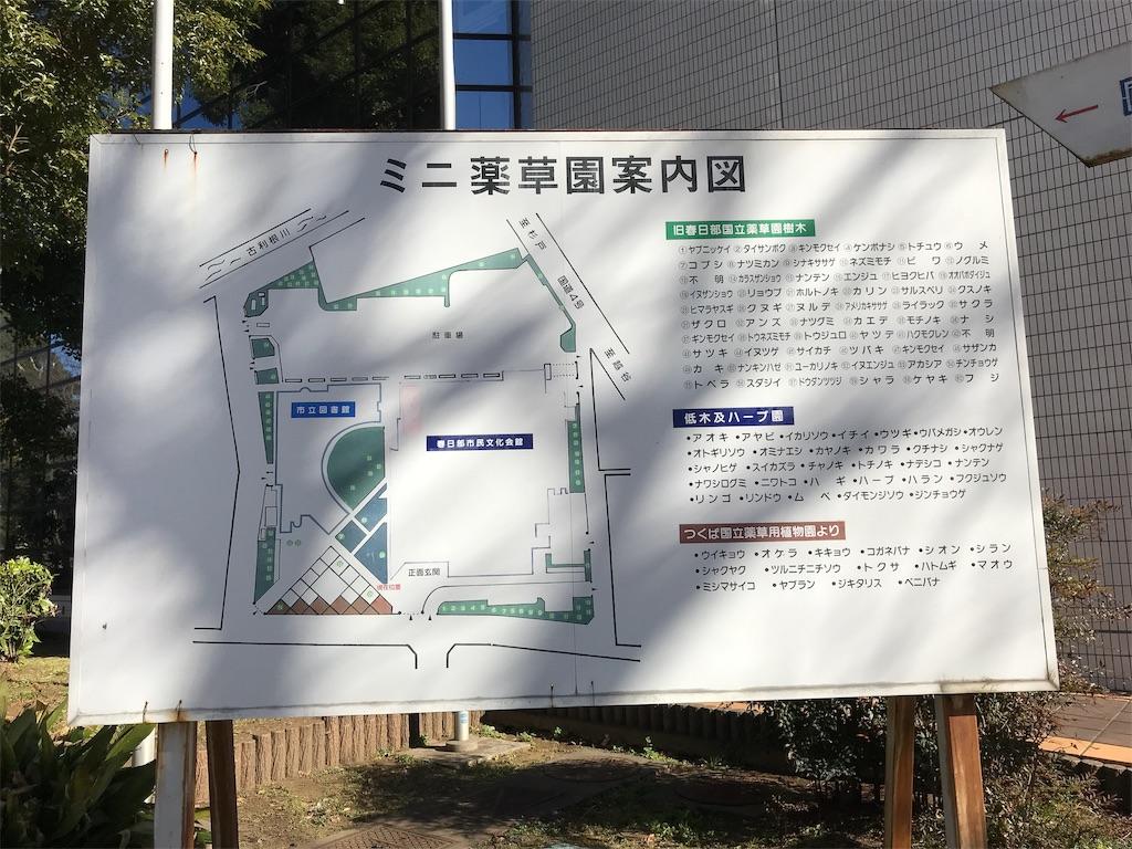 f:id:takejiisan:20181228203947j:image