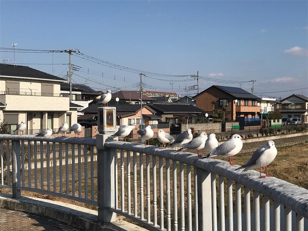 f:id:takejiisan:20190114195441j:image
