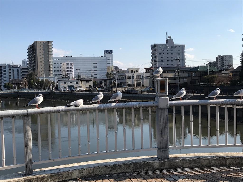 f:id:takejiisan:20190117121047j:image