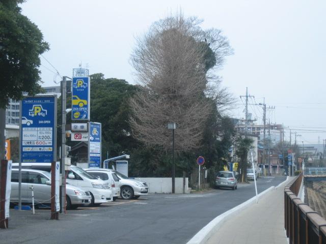 f:id:takejiisan:20190124111615j:plain