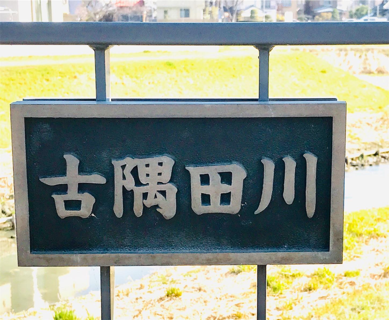 f:id:takejiisan:20190318132504j:image
