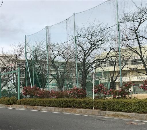 f:id:takejiisan:20190322160600j:image