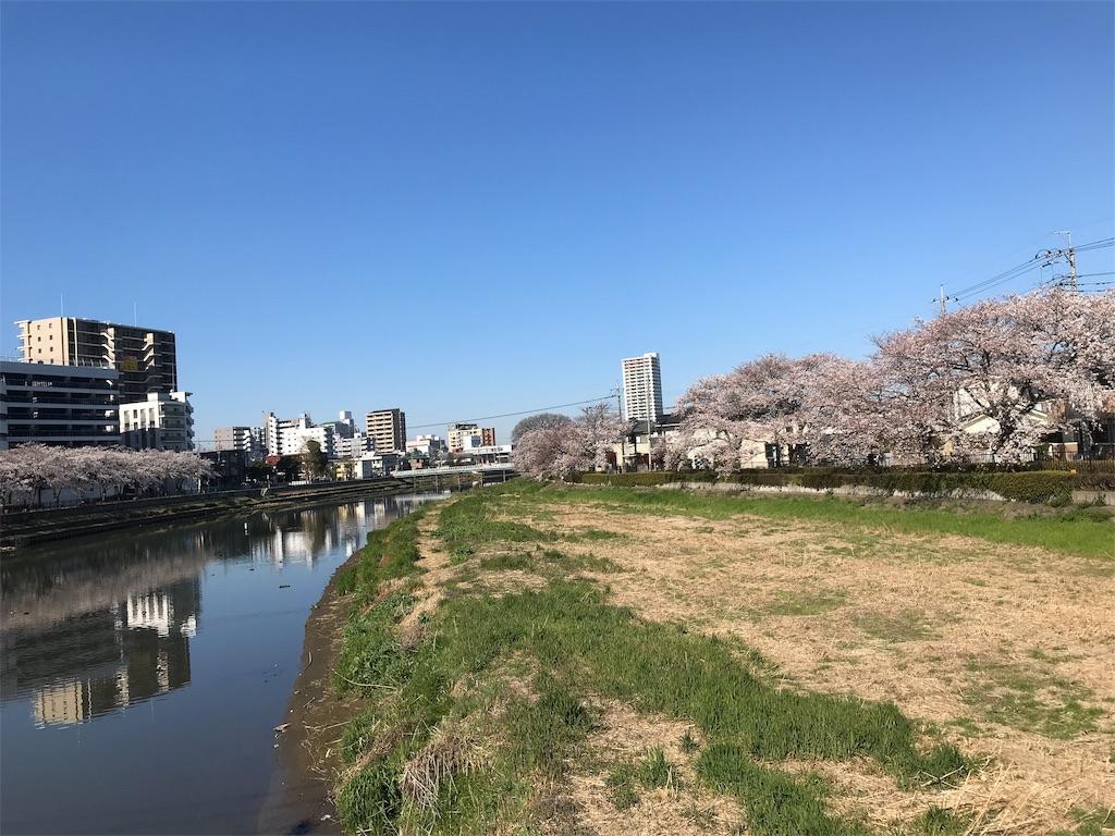 f:id:takejiisan:20190404092616j:image