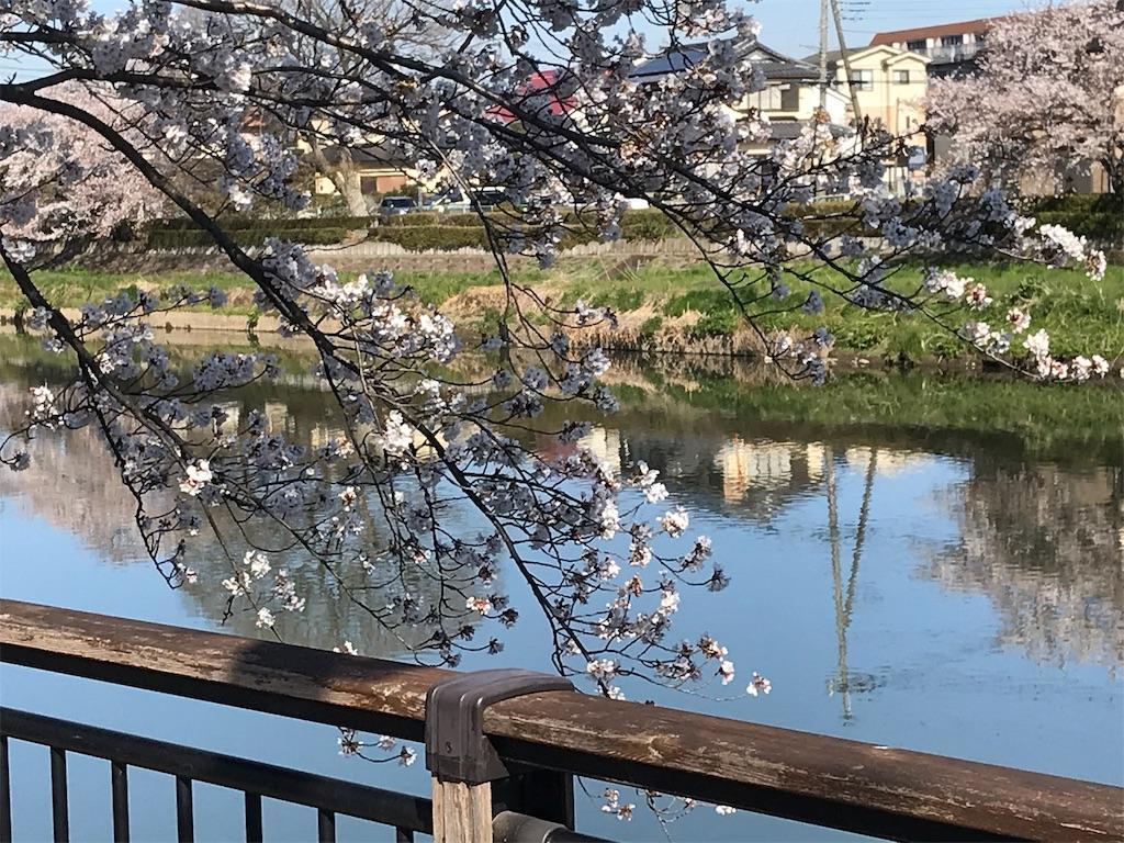 f:id:takejiisan:20190404092939j:image