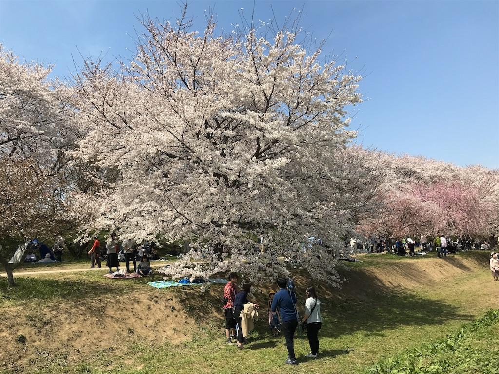 f:id:takejiisan:20190405145526j:image