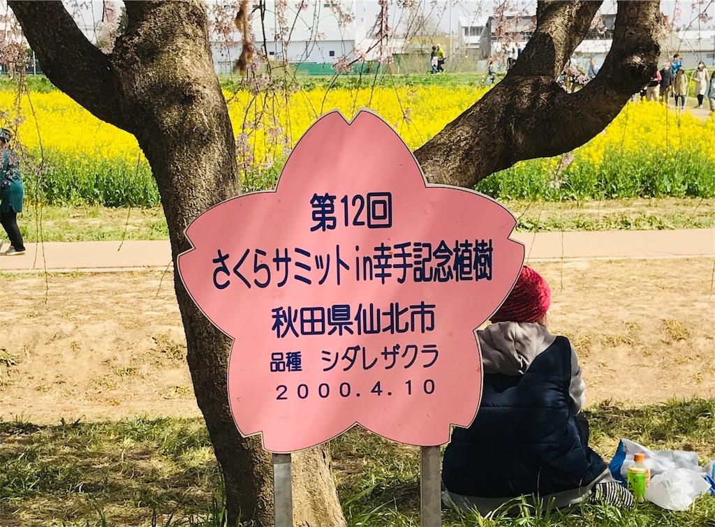f:id:takejiisan:20190405145631j:image