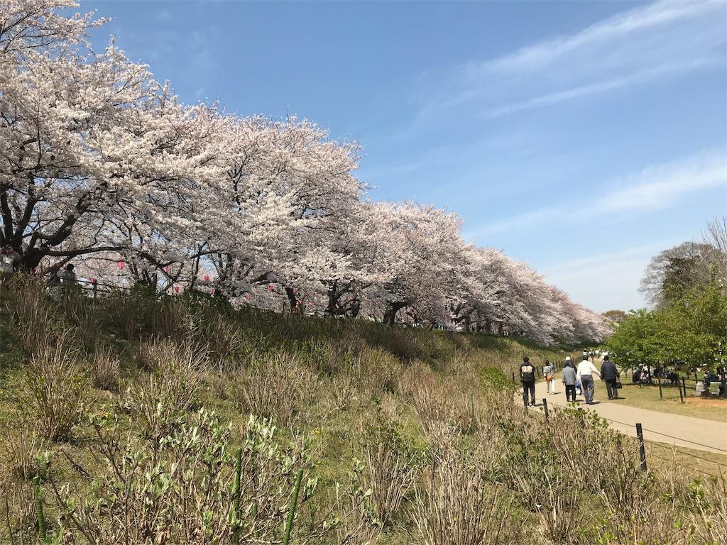 f:id:takejiisan:20190405151419j:image