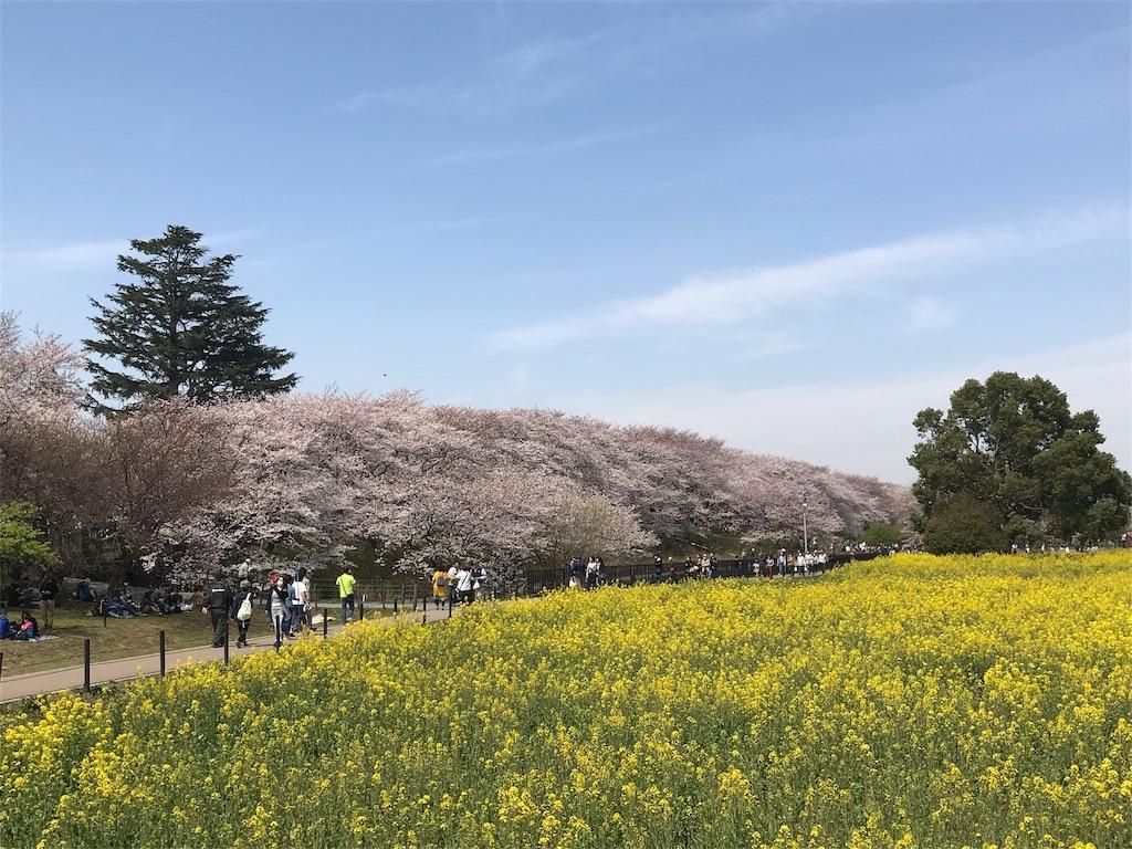 f:id:takejiisan:20190405151505j:image