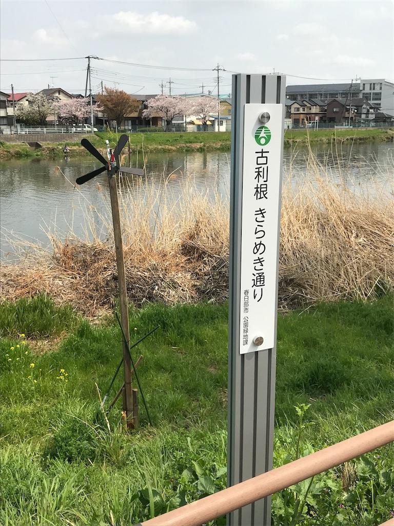 f:id:takejiisan:20190407151533j:image