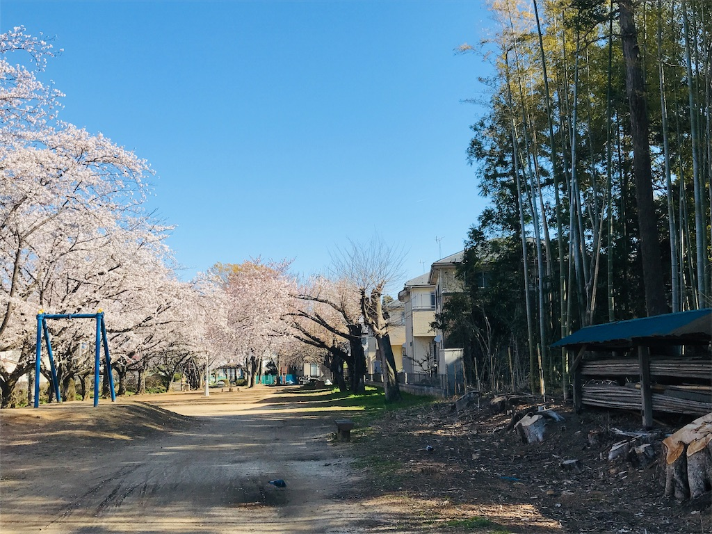 f:id:takejiisan:20190412124436j:image