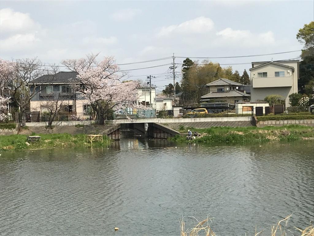 f:id:takejiisan:20190412124830j:image