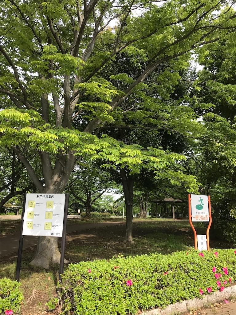 f:id:takejiisan:20190503160403j:image