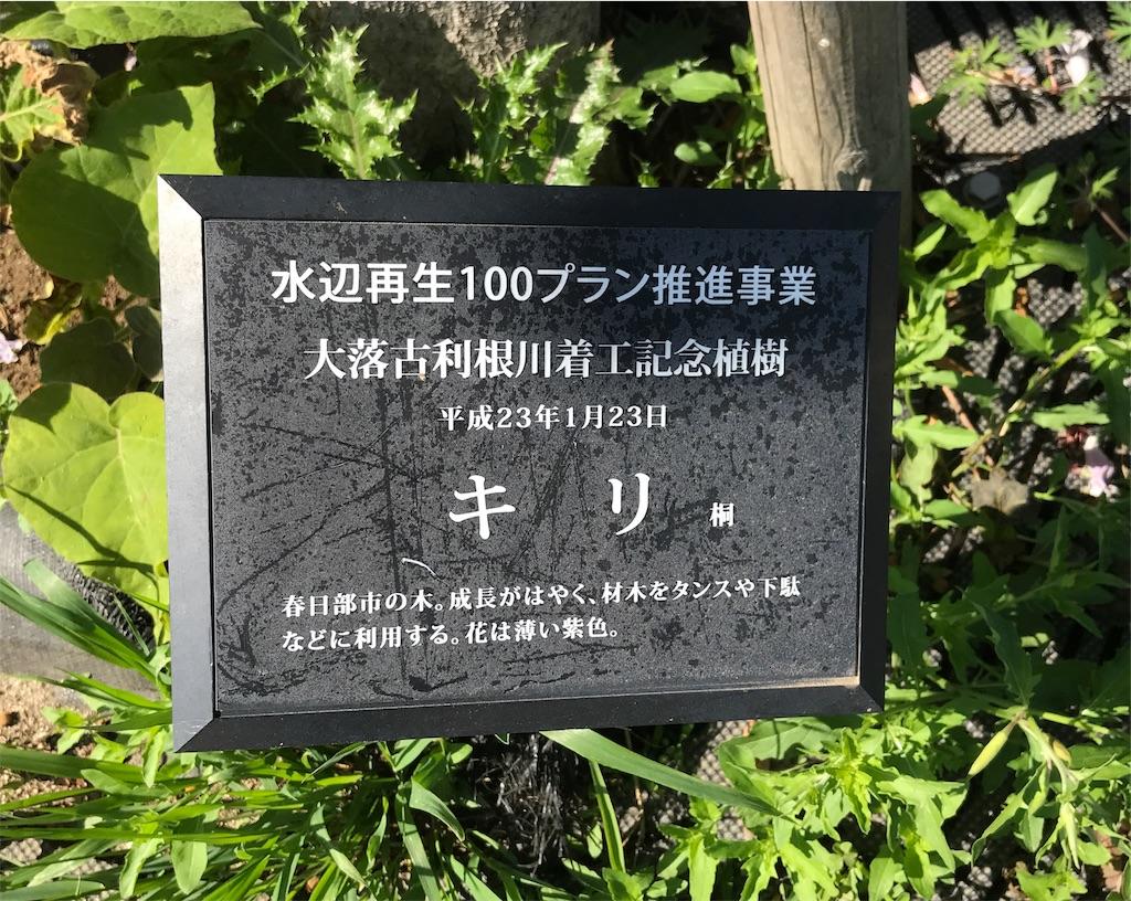 f:id:takejiisan:20190512153829j:image